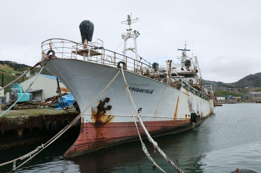"""Рыбокомбинат """"Островной"""" на Шикотане нуждается в поддержке, фото-5"""