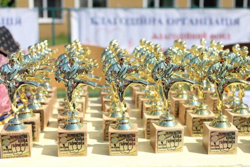 Мелитопольские каратисты показали высокий уровень в областных соревнованиях, фото-3