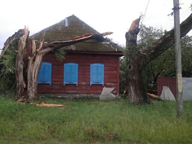 Из-за вчерашней непогоды 15 населенных пунктов Черниговщины остались без электричества и 30 – без связи, фото-2