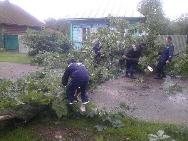 Из-за вчерашней непогоды 15 населенных пунктов Черниговщины остались без электричества и 30 – без связи, фото-3