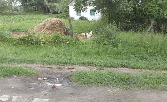 На Рівненщині смерть через оковити, фото-2