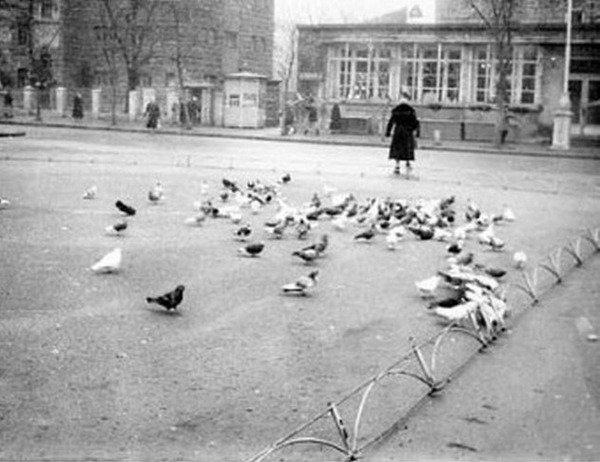 Прогулки по Запорожью с Романом Акбашем: гуляем по Металлургов и Медведева, фото-13