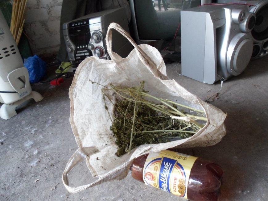 В Каменском при раскрытии краж из домовладений обнаружили плантацию конопли, фото-10