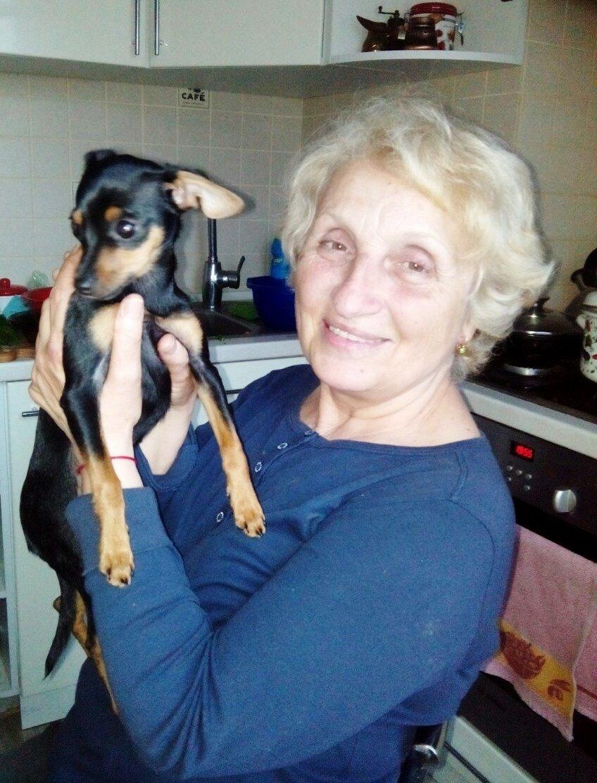 Херсонцы, у которых пропала собака, обратились за помощью в полицию, фото-1