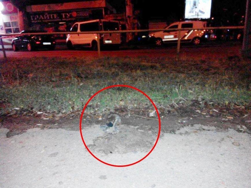 В  Запорожье из гранатомета обстреляли шашлычную (ФОТО), фото-6