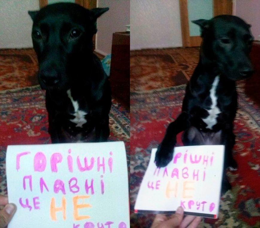 Жители Комсомольска организовали флеш-моб, чтобы выразить свой протест новому названию города (ФОТО), фото-7