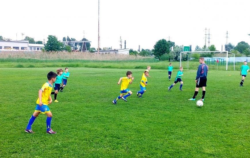 Серебро на региональном турнире по футболу взяли спортсмены из Доброполья и Белозерского, фото-5