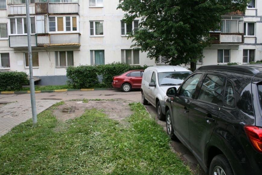 Троицкая Администрация провела День Соседей в микрорайоне В, фото-10