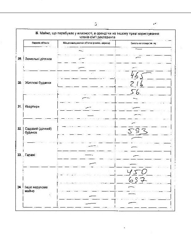 Замглавы Херсонского облсовета, сын которого имеет дело с Матиосами, не задекларировал бизнес и часть недвижимости жены (фото), фото-6
