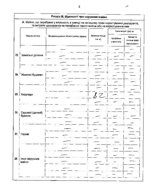 Замглавы Херсонского облсовета, сын которого имеет дело с Матиосами, не задекларировал бизнес и часть недвижимости жены (фото), фото-5