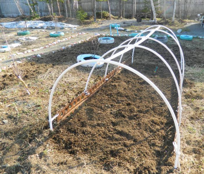Сад и огород. Выпуск 17: строим парник и кормим посадки, фото-6