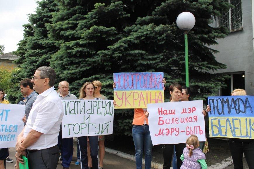Мітинг біля Новогродівської міської ради, фото-3