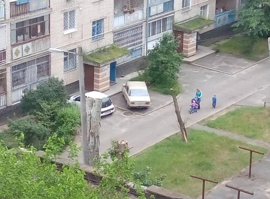 """""""Герои"""" паркования в Новой Каховке (фото), фото-2"""