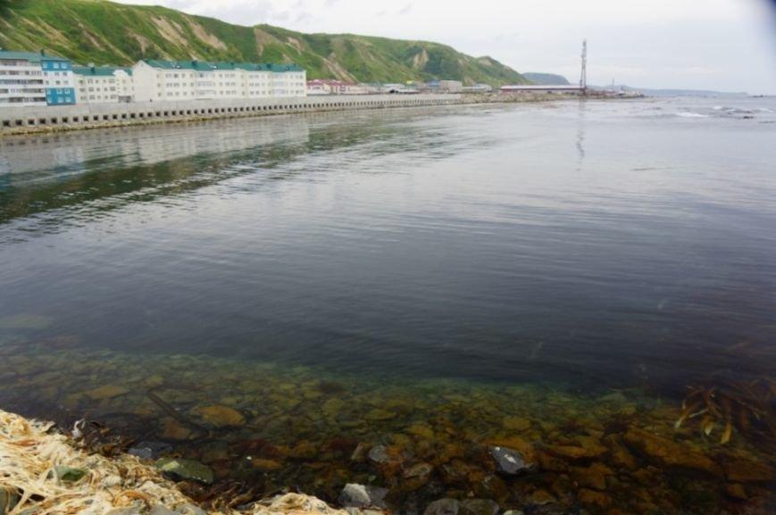 """Сахалинских экологов беспокоят незавершённые работы на аварийном танкере """"Надежда"""", фото-5"""