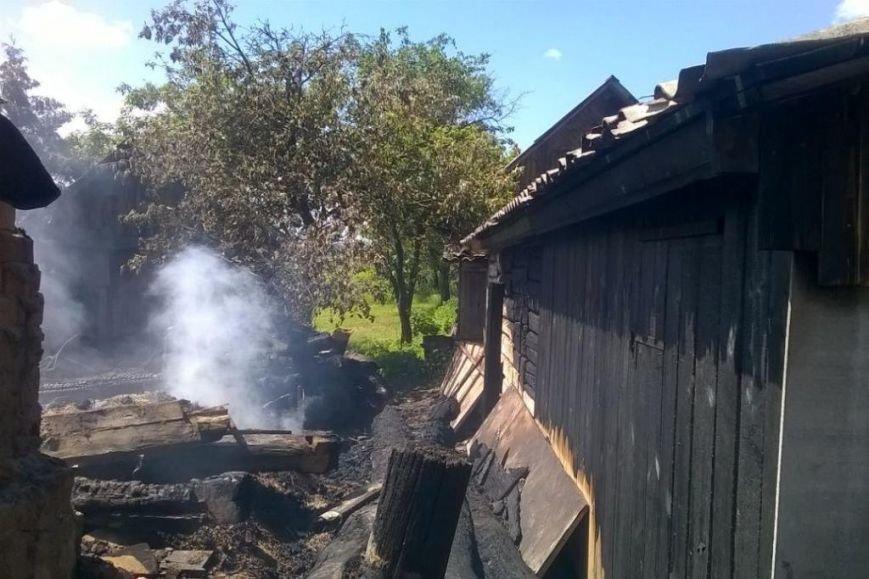 В Черниговской области сын поджег дом своей мамы. От постройки ничего не осталось, фото-1