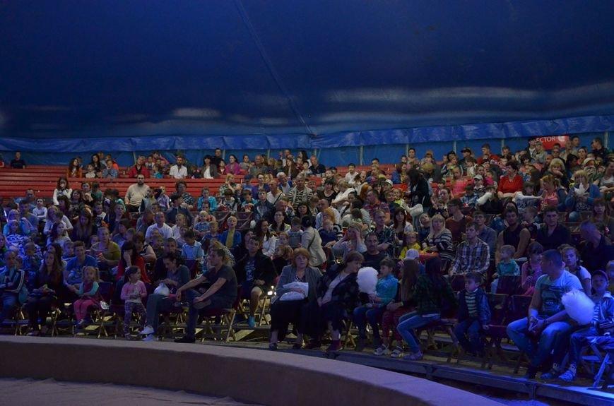 В Каменском состоялась премьера шоу нового поколения «Ангелы цирка» от цирка «Кобзов», фото-6