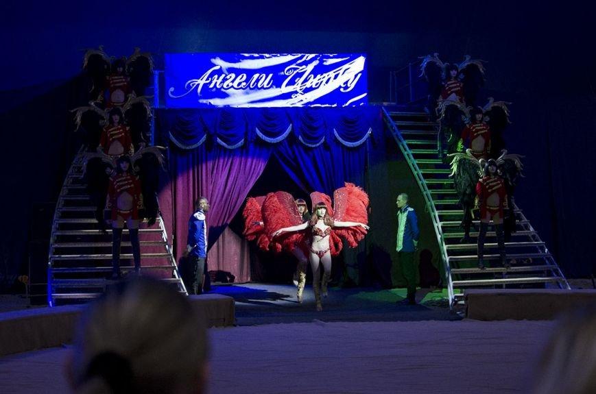 В Каменском состоялась премьера шоу нового поколения «Ангелы цирка» от цирка «Кобзов», фото-7