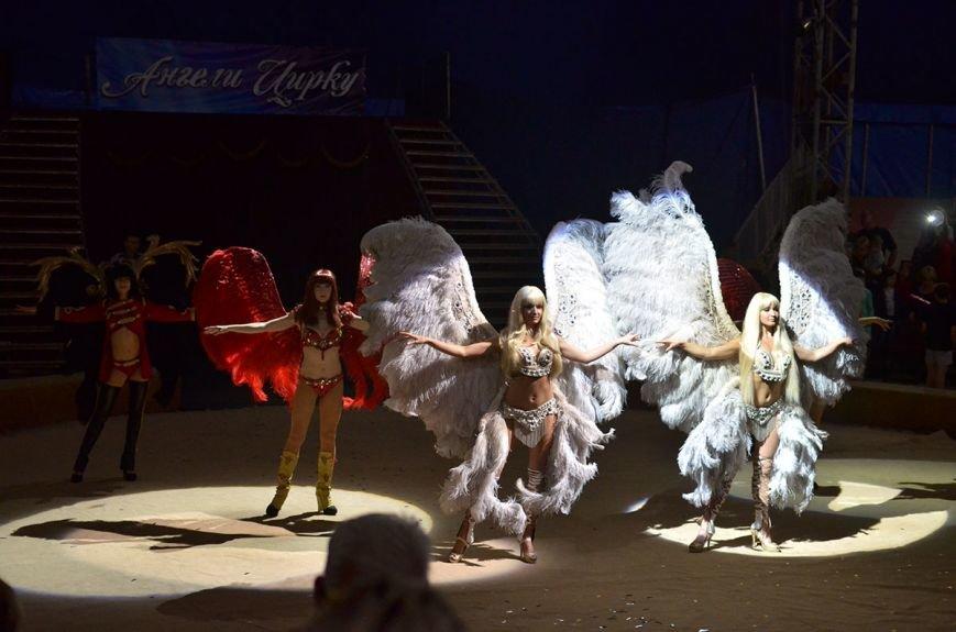 В Каменском состоялась премьера шоу нового поколения «Ангелы цирка» от цирка «Кобзов», фото-13