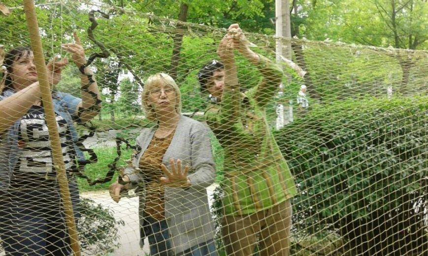 Коллектив и читатели херсонской библиотеки сплели маскировочные сети пограничникам (фото), фото-2