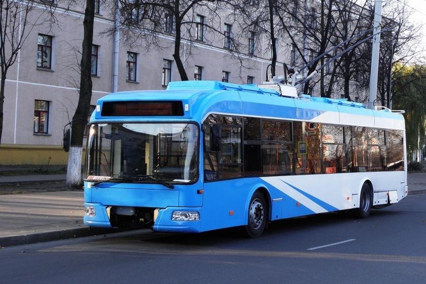 Белорусские троллейбусы по 4 миллиона выедут на улицы Чернигова этой осенью, фото-5