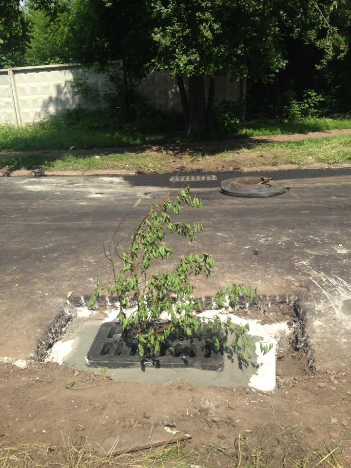 В Кривом Роге под полутораметровым слоем земли нашлись ливневки (ФОТО), фото-8