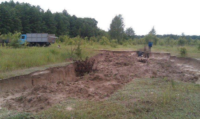 В Черниговской области незаконно вывезли песок и уничтожили 2 гектара леса, фото-4