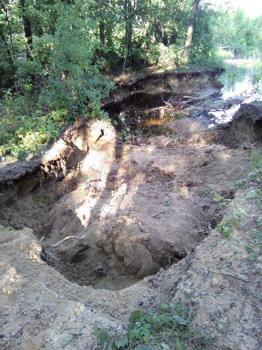 В Черниговской области незаконно вывезли песок и уничтожили 2 гектара леса, фото-1