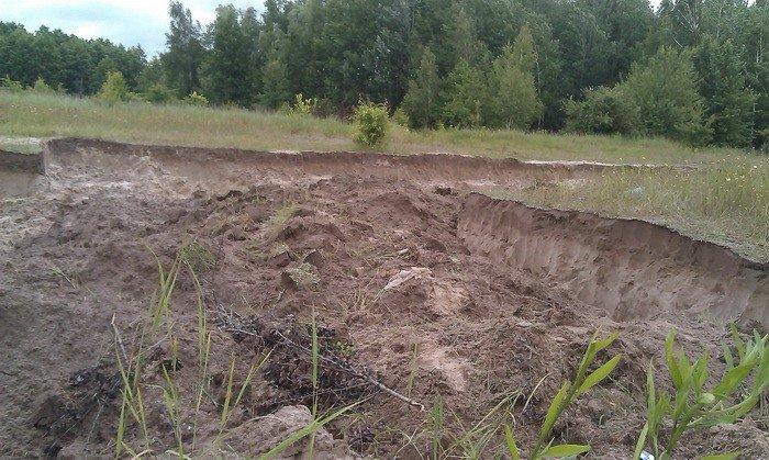 В Черниговской области незаконно вывезли песок и уничтожили 2 гектара леса, фото-2