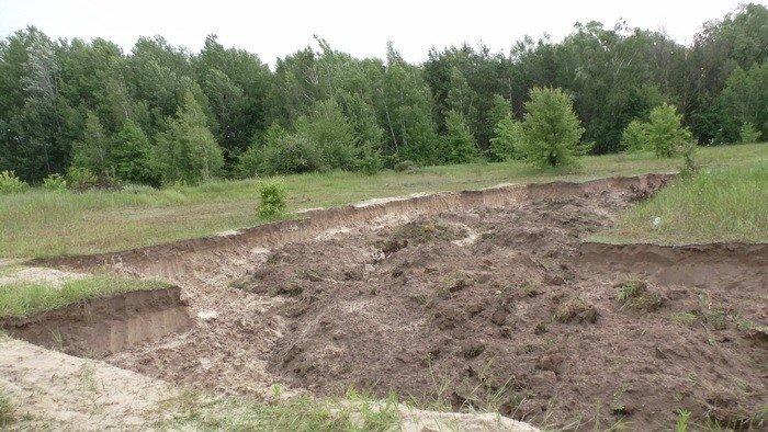 В Черниговской области незаконно вывезли песок и уничтожили 2 гектара леса, фото-7