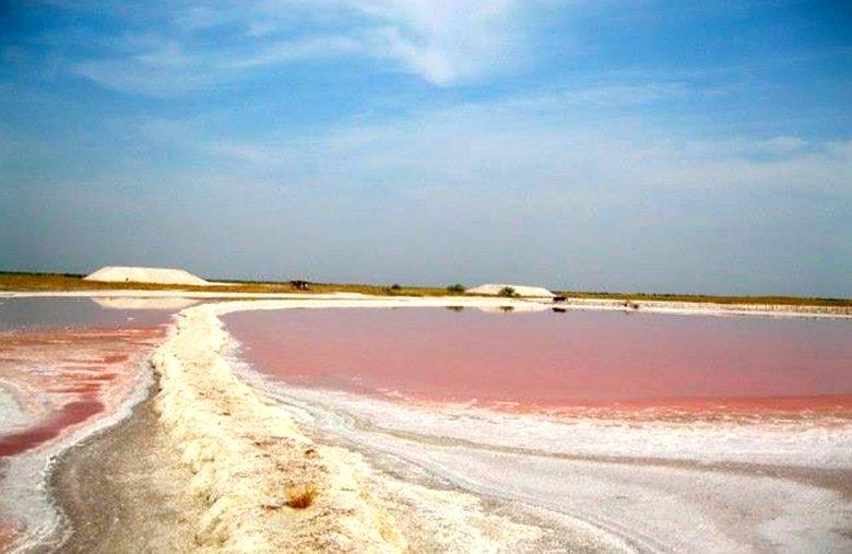 В Херсонской области есть розовое озеро с целебной водой (фото), фото-2