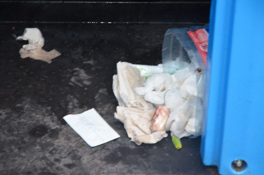 В Мариуполе пенсионерка чуть не убилась в грязном биотуалете (ВИДЕО), фото-2