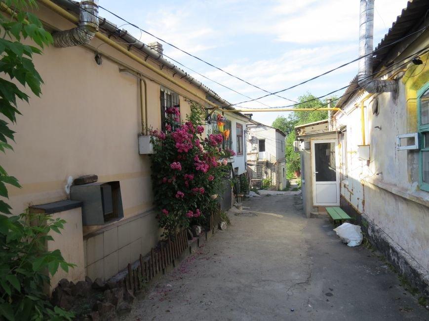 Переименуем все! В Мариуполе хотели стереть с карты ул. Итальянскую и ул. Митрополитскую (ФОТО+ВИДЕО), фото-17