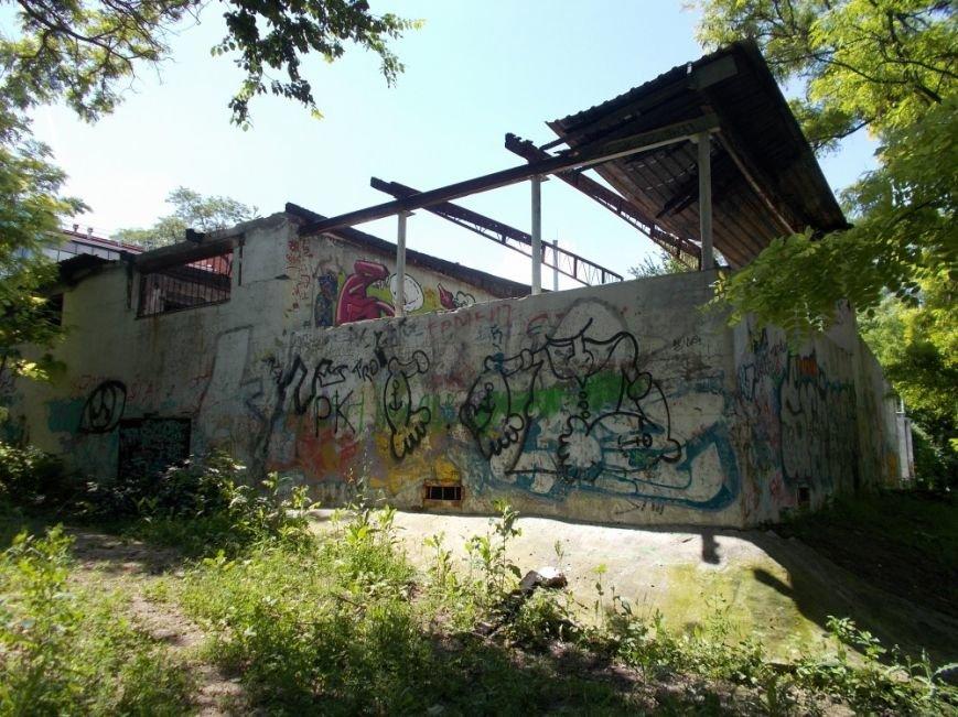Ростовский парк Собино превратился в пастбище, фото-4