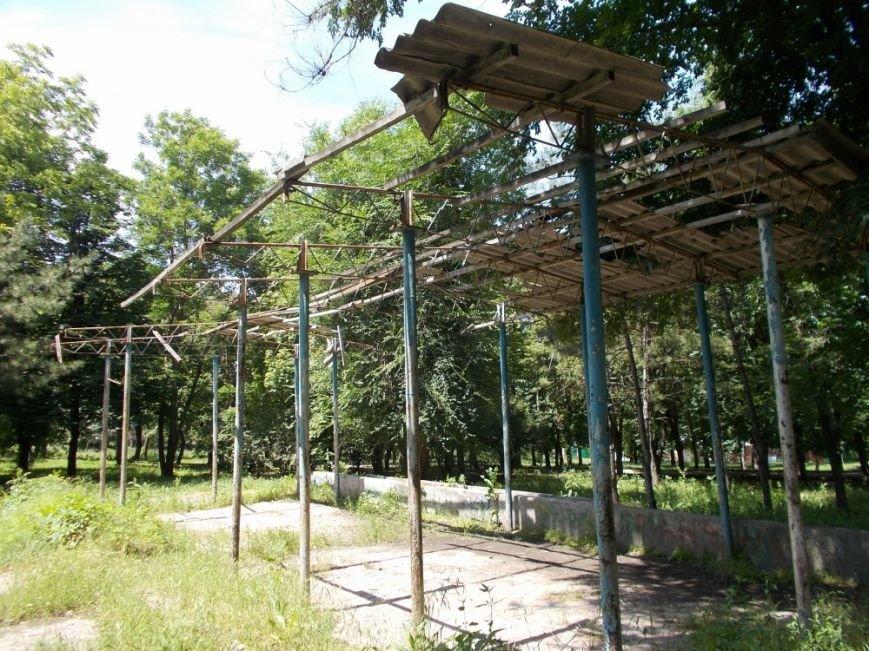 Ростовский парк Собино превратился в пастбище, фото-1