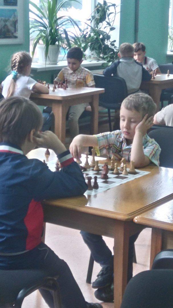Юный шахматист из Мирнограда (Димитрова) достойно представил родной город на фестивале в Краматорске, фото-1