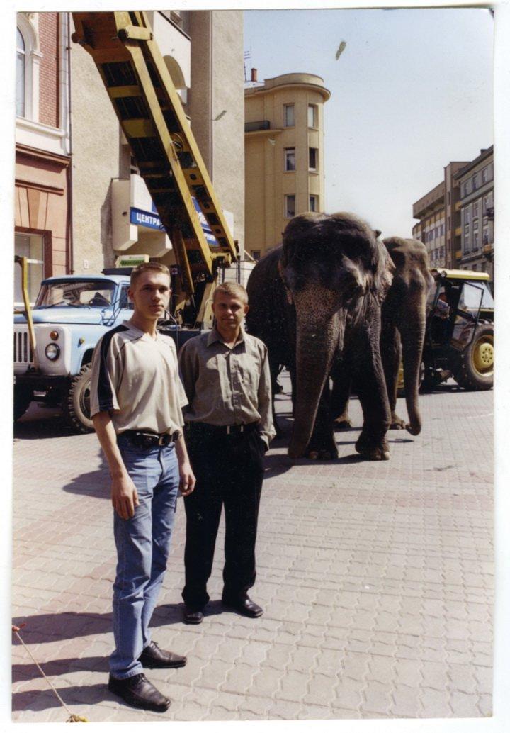 3.-слон-2