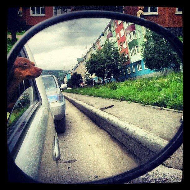 Макс путешествует по городу.Руслан