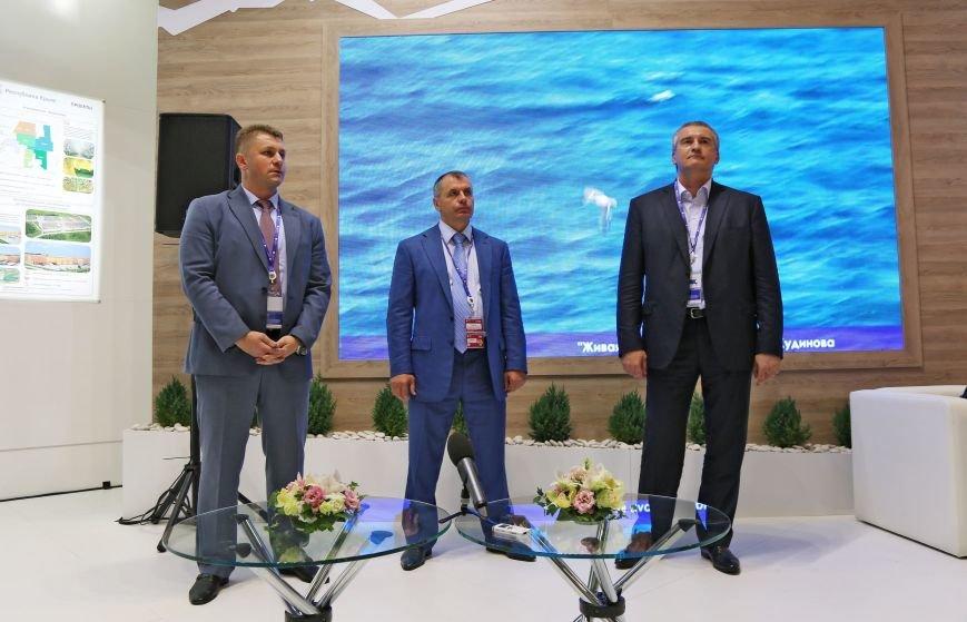 Аксёнов: Инвестиционный потенциал Республики Крым впервые представлен на Петербургском международном экономическом форуме (ФОТО), фото-3