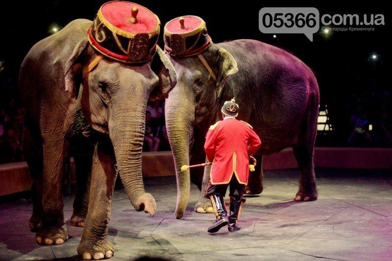 «Восхитительное шоу WOOZU – это настоящее произведение циркового искусства» (фото и видео), фото-4