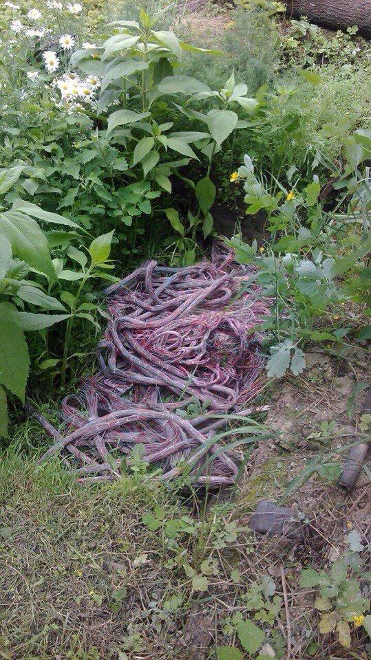 В Каменском сотрудники «Укртелекома» воровали кабели «Укртелекома», фото-1