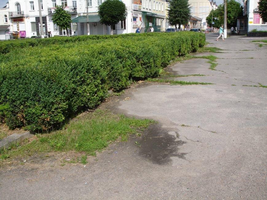 Фотофакт: коли дійде черга до благоустрою Торгової площі?, фото-4