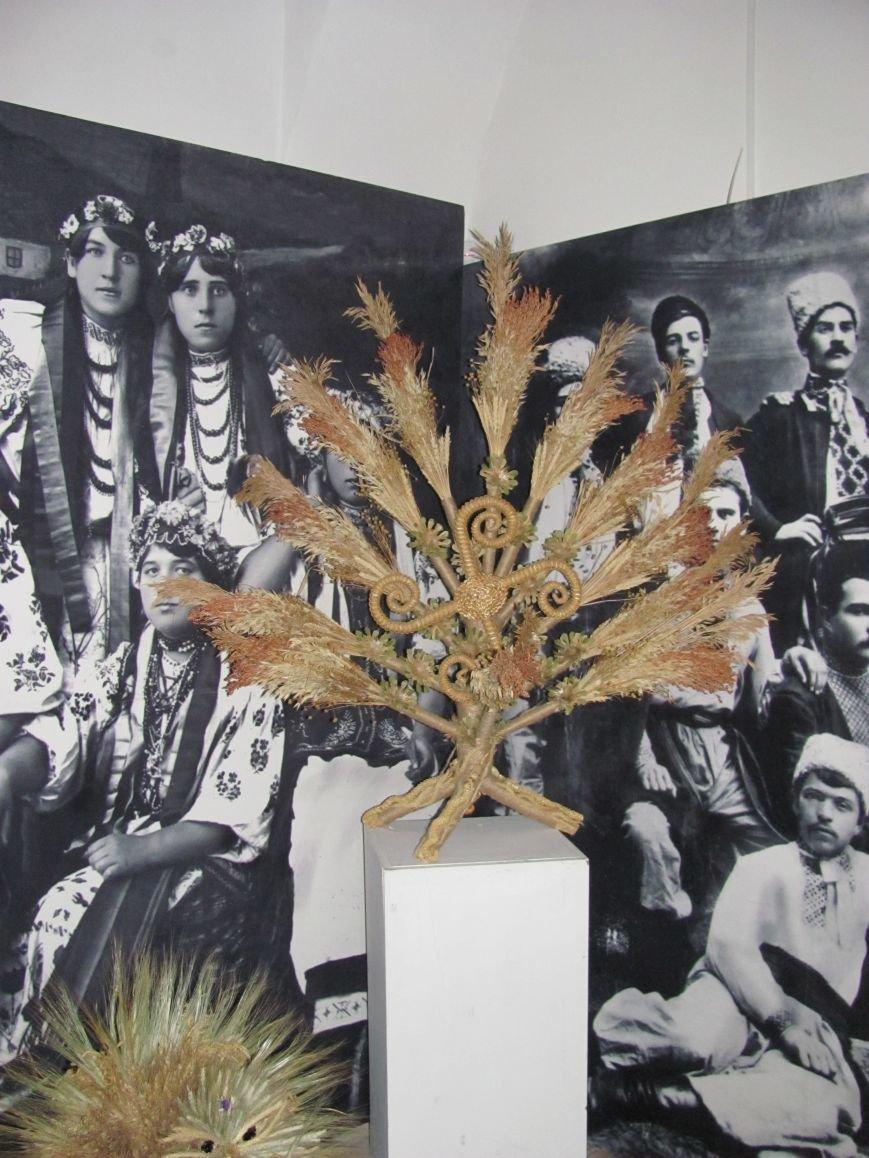 Унікальна виставка Лесі Колосенко у Білій Церкві, фото-5