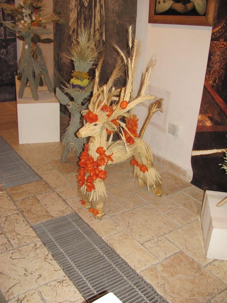 Унікальна виставка Лесі Колосенко у Білій Церкві, фото-4