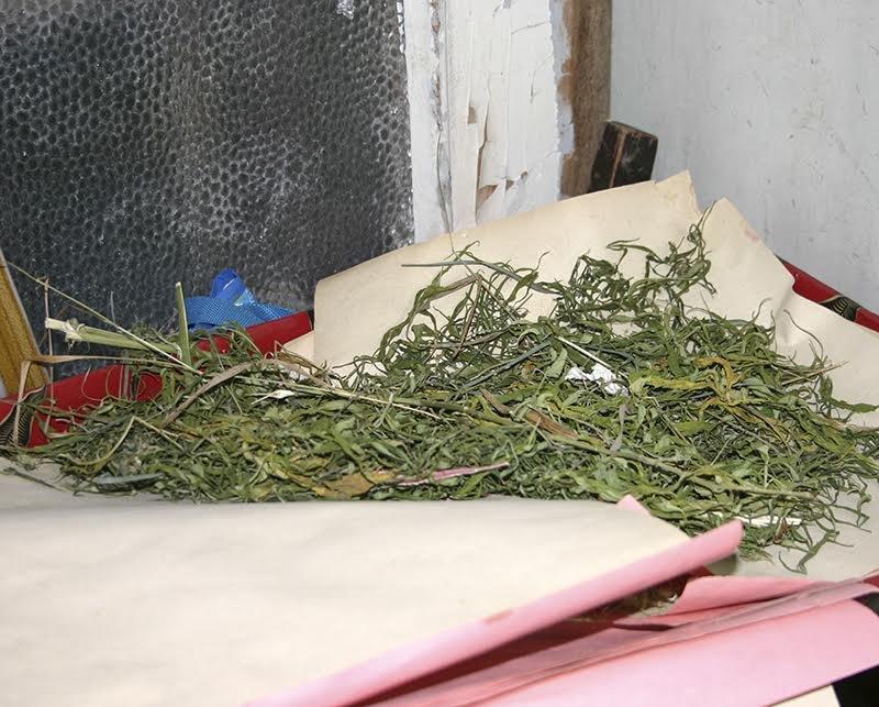 Полиция Мариуполя накрыла наркопритон, в котором рос 9-месячный ребенок (ФОТО), фото-1