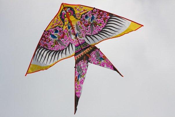 Фестиваль воздушных змеев в пушкине4