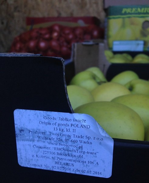 В Симферополе уничтожили более 70 кг польских яблок, найденных на складе в Севастополе (ФОТО), фото-2