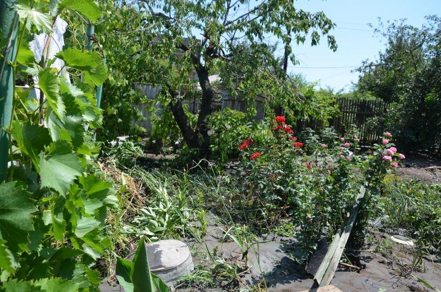 В Мариуполе фекалии ломали заборы, уничтожали огороды и затопили несколько частных домов (ФОТО+ВИДЕО), фото-26