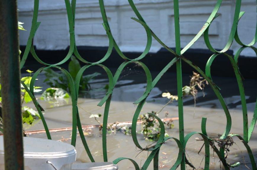 В Мариуполе фекалии ломали заборы, уничтожали огороды и затопили несколько частных домов (ФОТО+ВИДЕО), фото-8