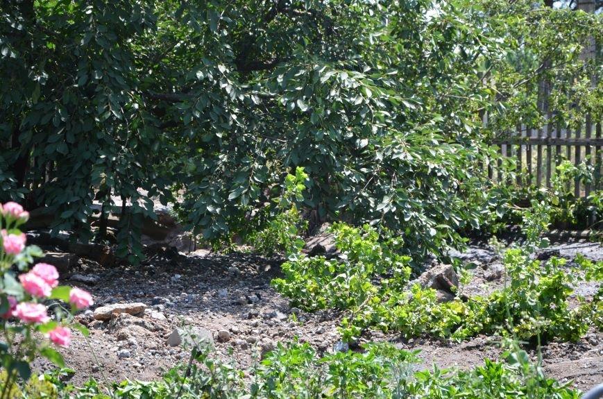 В Мариуполе фекалии ломали заборы, уничтожали огороды и затопили несколько частных домов (ФОТО+ВИДЕО), фото-23