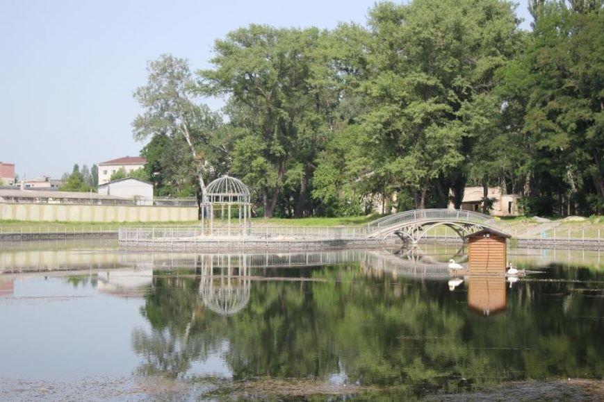 Строители в очередной раз планируют почистить озеро и установить скамейки в Городском саду до конца года (ФОТО), фото-5